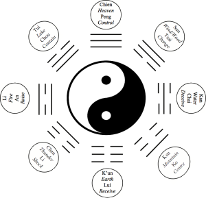 Ying Yang Symbol with Postures